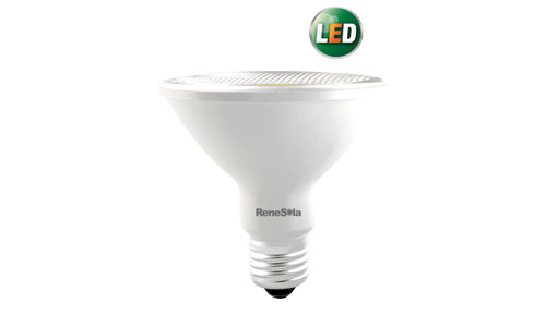 LED PAR SPOTLIGHT